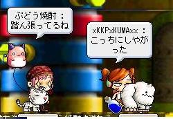 Maple111025_035749.jpg