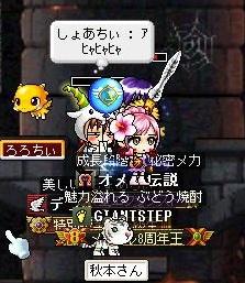 Maple111127_203109.jpg