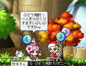 Maple111223_211142.jpg