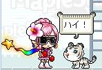 Maple111226_035328.jpg