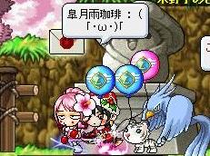 Maple120102_203215.jpg