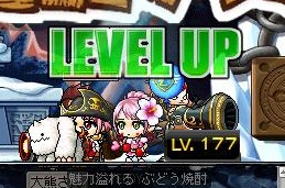 Maple120112_233620.jpg