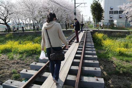 佐奈川 線路は真ん中に木の板有