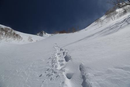 雪崩の危険がある場所