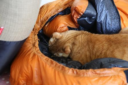 虎太 寝袋をガジる その1
