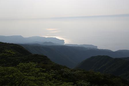 太平洋が見えた