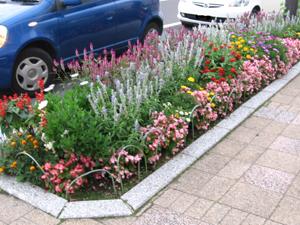 景色 花壇1