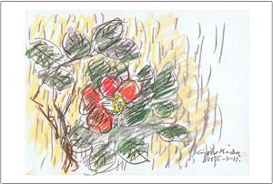 椿の図のコピー