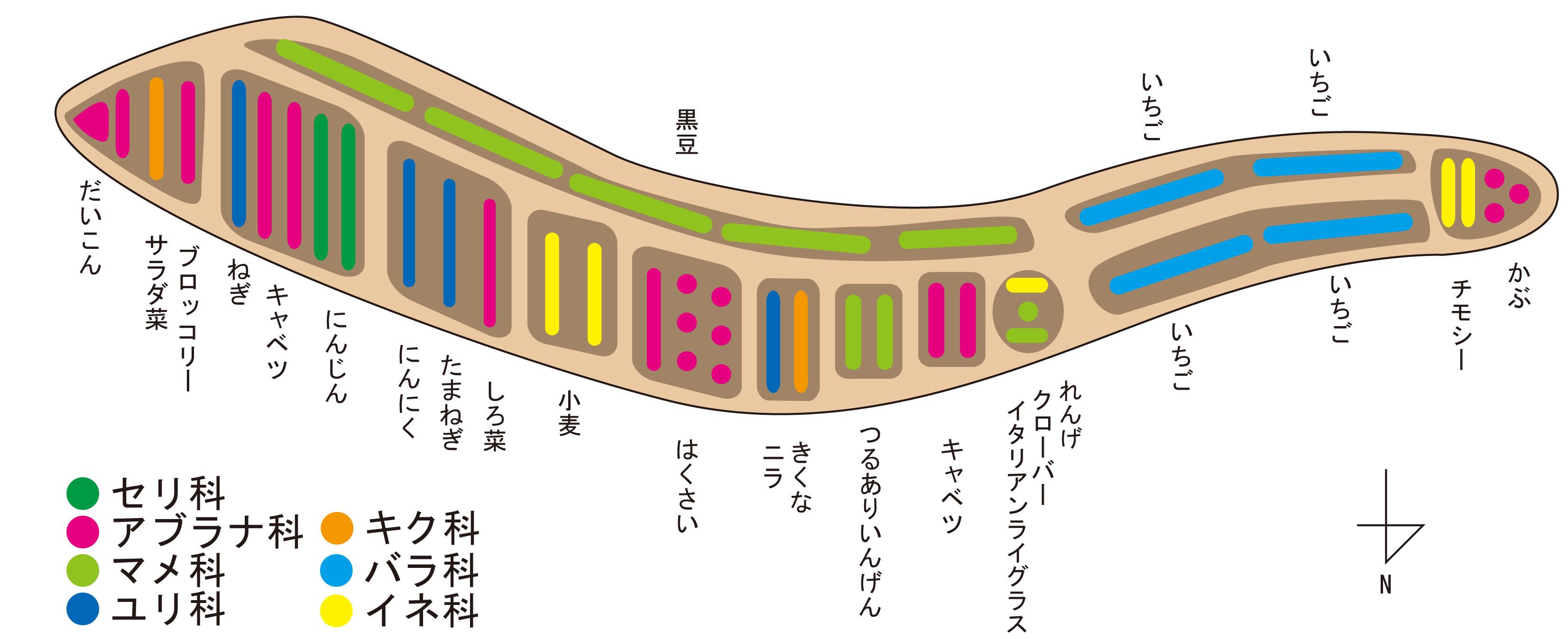 2011 秋 作付け表