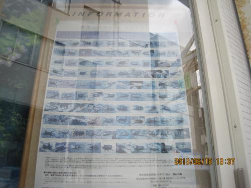 IMG_6807_タキオン②