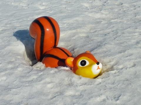 雪に埋もれてたのねー