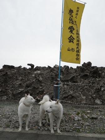 2012.4.22 残雪の山の前で(本来の会場)