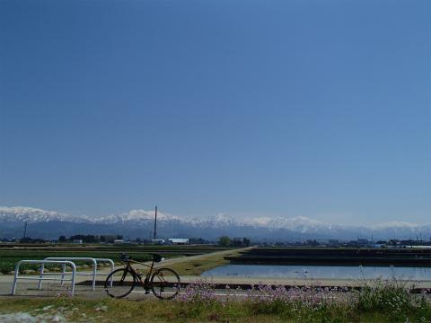 P4290009.jpg