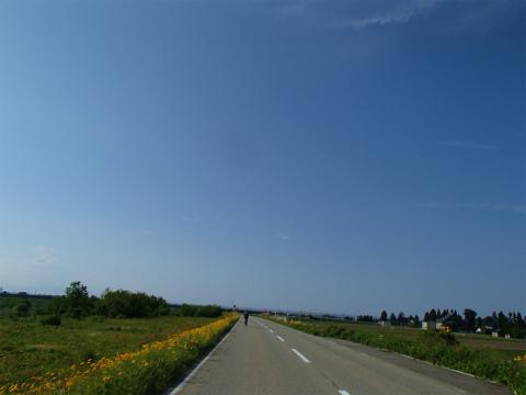 P6020081.jpg