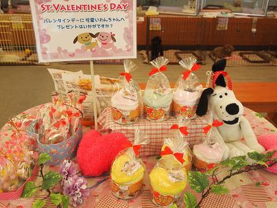 ブログ バレンタインコーナー