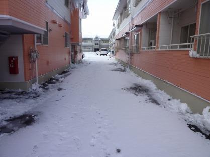 雪かき後2