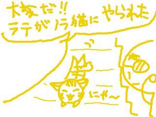 snap_dreamtravelers_201164215638.jpg