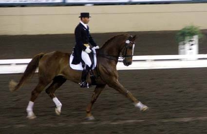 default-ehow-images-a04-h9-o8-horse-learn-dressage-.jpg
