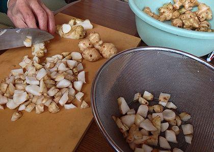 2013キクイモ乾燥1