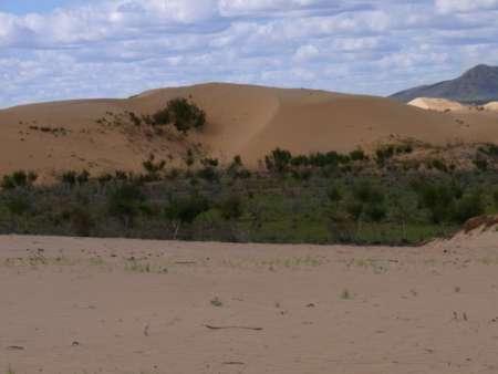 幹線道路に接する砂漠