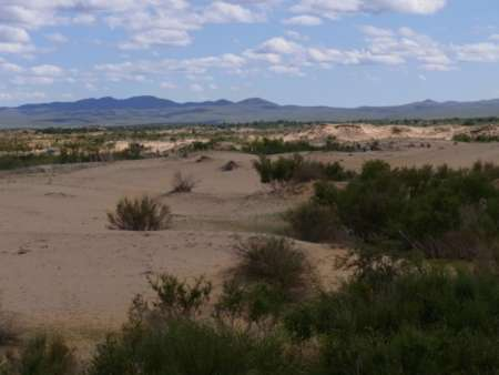 砂漠と草原の接点【エッジエフェクト】