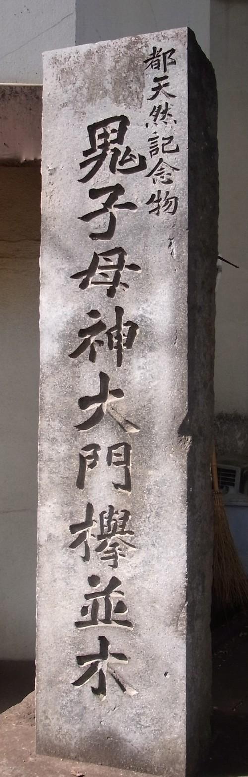 鬼子母神ケヤキ並木 079