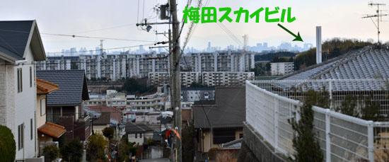 DSC_6483.jpg