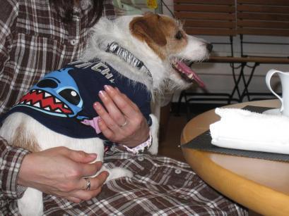 2011.12 狗の郷 004