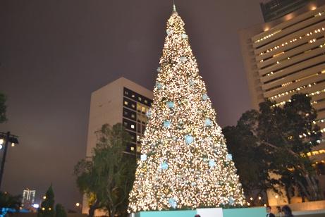 ティファニーのXmas tree