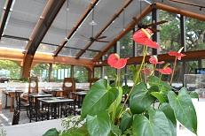 TAIO ホテル レストラン