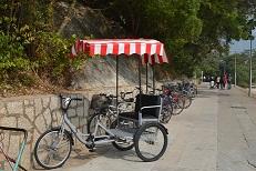 taio 人力自転車