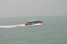 イルカ観光用船