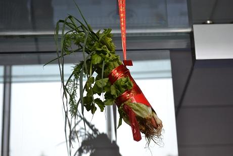 獅子用野菜