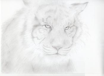 鉛筆画002