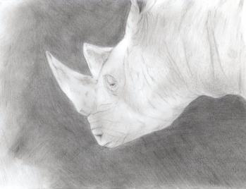 鉛筆画サイ012
