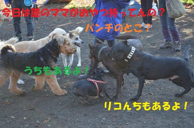 11_17_39.jpg
