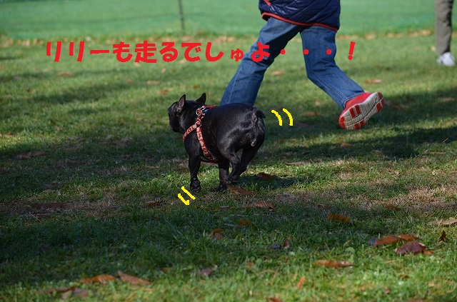 11_17_57.jpg