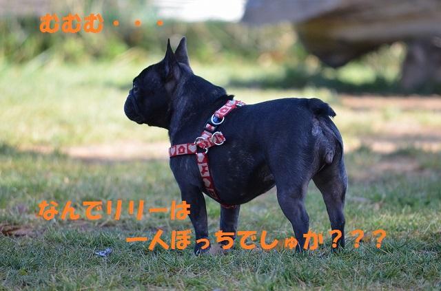 11_17_59.jpg