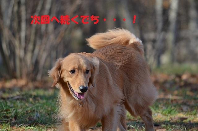 11_17_70.jpg