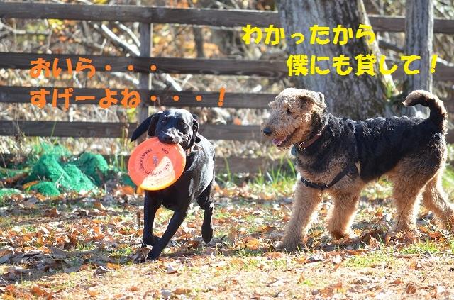 11_17_87.jpg