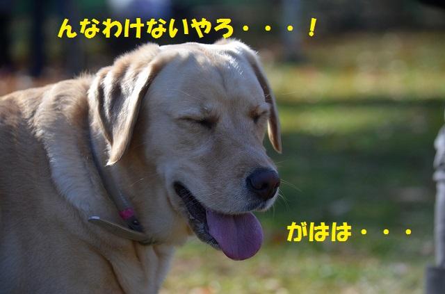 11_17_91.jpg