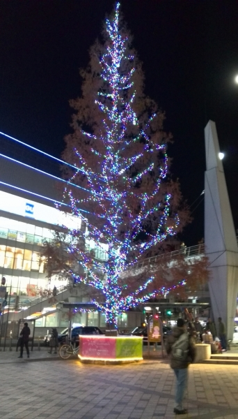 20131217_横須賀中央ツリー