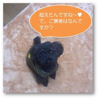20131226_ダイスケ2