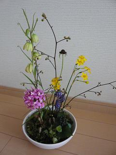 spring2010.jpg