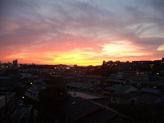 yuuhi2011.jpg