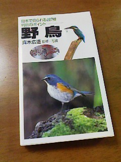 野鳥の本3
