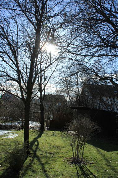 25Februar2010-05.jpg