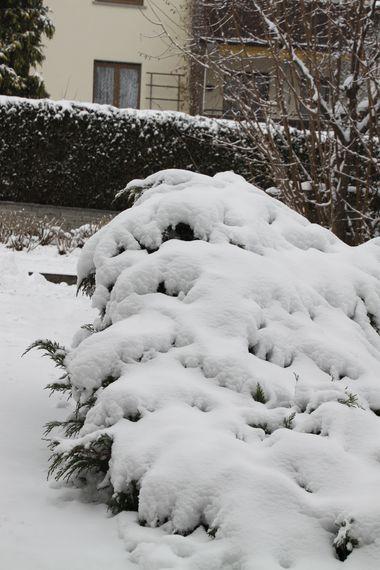 29November2010-01.jpg