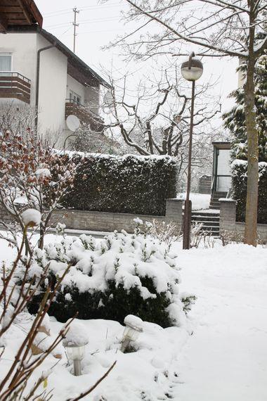 29November2010-02.jpg