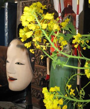 2010.3.5菜の花blog